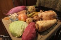 野菜をたのしむうつわ展 -春-